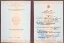 Диплом специалиста. Лозовой Владимир Викторович